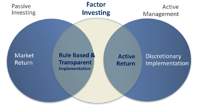 Source: MSCI's Foundation of Factor Investing