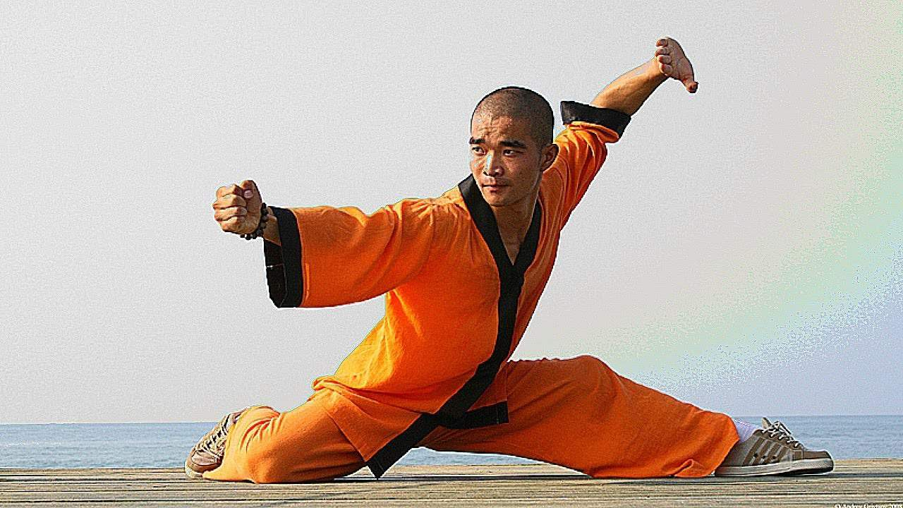The Monk Like Warrior